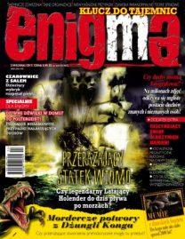 Enigma 2/2013